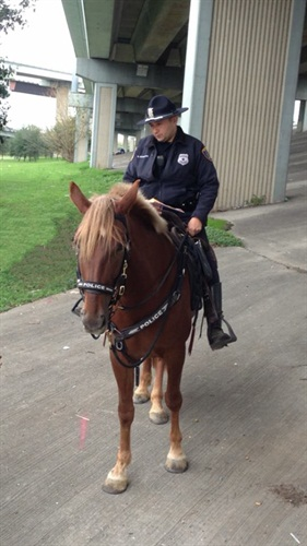 Photo: Houston PD Facebook