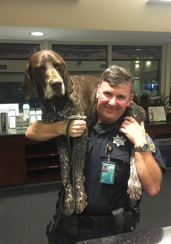 The San Francisco Police Officers Association posted on Facebook that the recently retired K-9separated from his handlerwill be reunited with the officer. Image courtesy of SFPOA / Facebook.