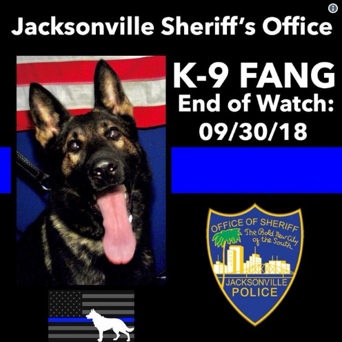 A 17-year-old is being charged as an adult in the shooting death of K-9 Fang.