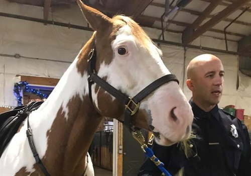 Hector Orozco—the husband of slain Omaha Police Officer Kerrie Orozco—has donated the family's horse to the Omaha Police Department's Mounted Patrol Unit. Image courtesy of Omaha PD / Facebook.