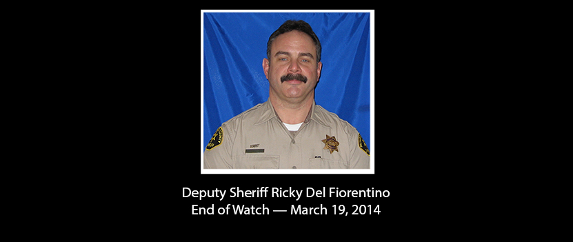 Calif. Deputy Killed by Suspected Carjacker