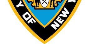 Over 200 Firearms Recovered in NY Gun Smuggling Bust