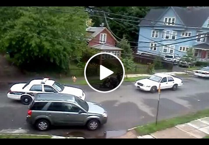 Video: Conn. Police Investigate Arrest of Man with Sawed-Off Rifle