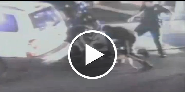 Video: N.J. Man Sues Over K-9 Arrest