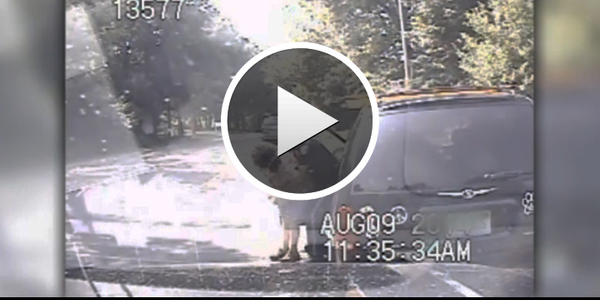 Video: Michigan Officer Saves Choking Woman at Traffic Stop