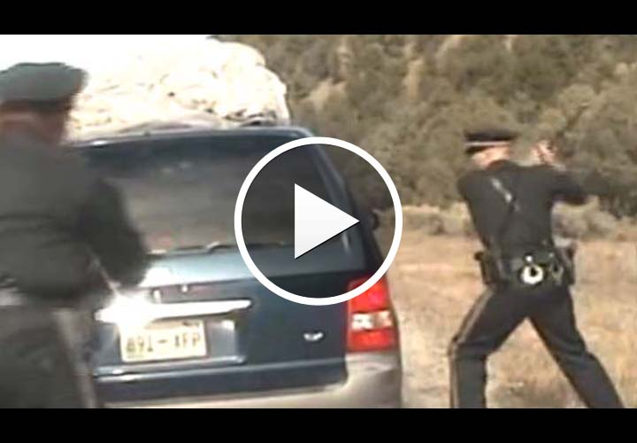 Video: Officers Investigated Over Wild N.M. Traffic Stop