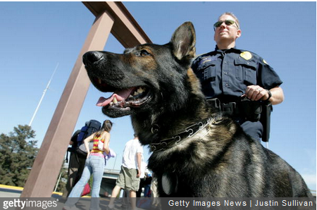 Pot-Sniffing Dogs Still Useful in CA, Officers Say