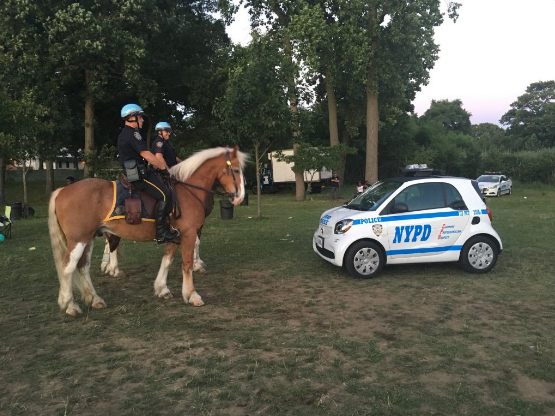 NYPD Expanding Fleet of Smart Cars
