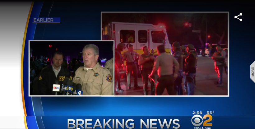 Sheriff's Sergeant, 11 Others Killed in California Bar Shooting