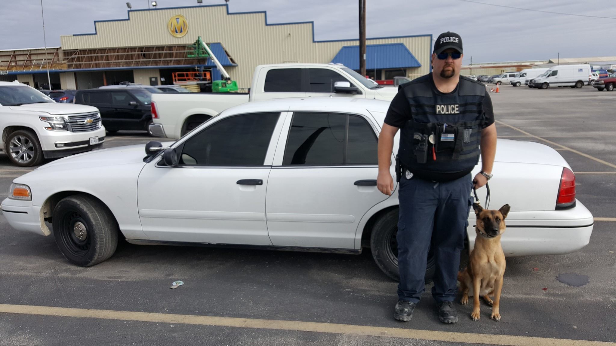 Group Trains 'Pit Bulls' to be Police K-9s