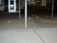 Police marked bullet casings found outside the doors of Sandy Hook Elementary.