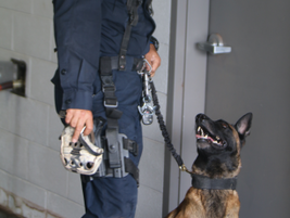 K-9 Beto from Baja State Police in Mexico and Top Dog Winner! (Photo: Leslie Pfeiffer)