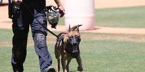 Desert Dog Regional Police K-9 Trials