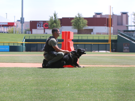 K-9 Zeus and Officer Tramundanas from the Maricopa County (AZ) Sheriff's Office (Photo: Leslie...