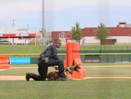 K-9 Maverick and Officer Vusovich from the Scottsdale (AZ) Police Department (Photo: Leslie...
