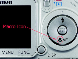A digital point-and-shoot camera can do a great job photographing injuries, especially when you...