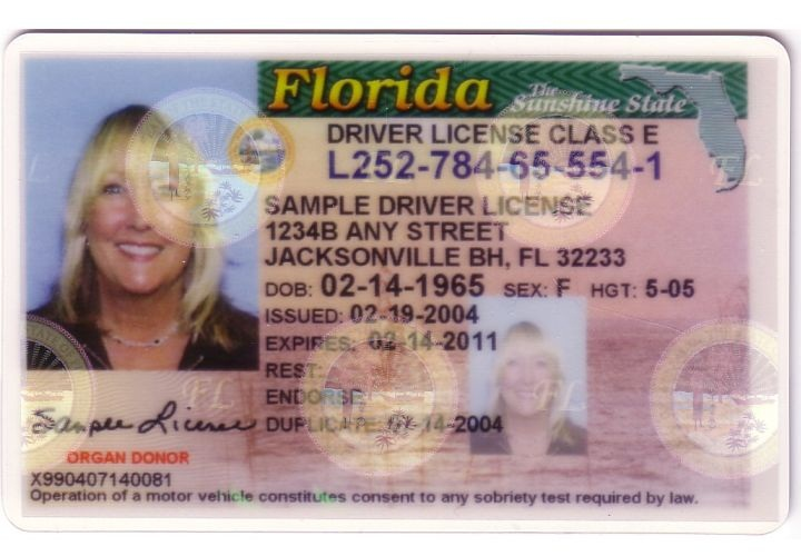 Florida Drivers License Test Requirements - grayintel