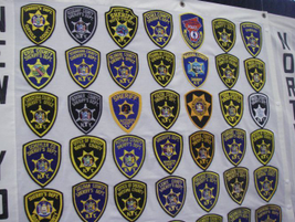 Sheriff's departments in New York mostly follow the uniformity principle with their patches.
