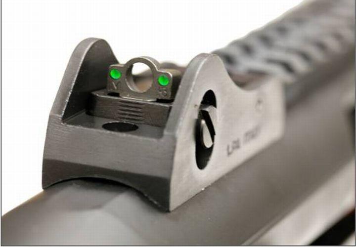 The R12P's rear sight.
