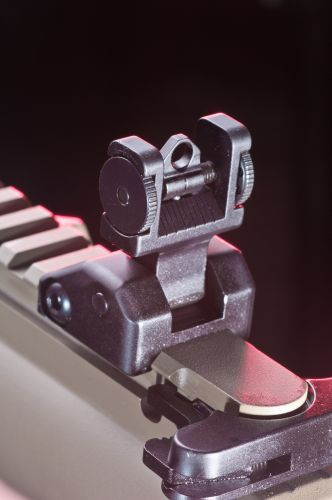 The carbine includes a flip-up rear back-up iron sight.