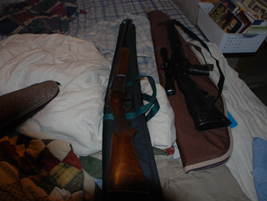 Two long guns were recovered from the gunman's trailer.