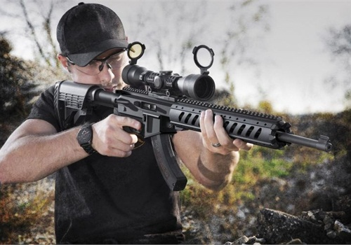 Ruger AR-22 Stock System - Weapons - POLICE Magazine