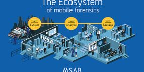 MSAB Ecosystem