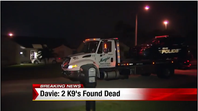 2 K-9s Die in Vehicle at Florida Officer's Home