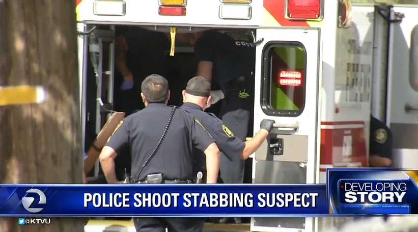 CA Suspect in Stabbing of Man and K-9 Was Fatally Shot by Police