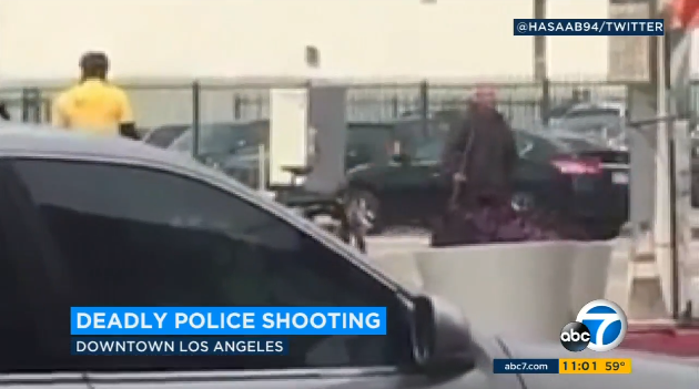 LAPD Officers Shoot, Kill Man Armed with Large Metal Pipe