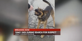 OH K-9 Dies Trying to Catch Kidnapping Suspects