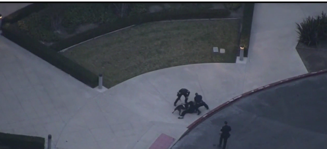 Wild California Vehicle Pursuit Ends with K-9 Takedown