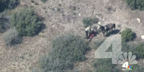 California Sheriff Investigating Deputies' Use of Force After Viewing Video of Desert Arrest