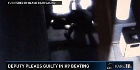 Minnesota Deputy Pleads Guilty to Beating K-9 Partner