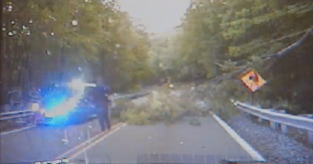 New Jersey Officer Struck by Tree While Clearing Branch from Road