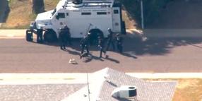 Pug Dog Harasses Phoenix K-9, Officers During Barricade